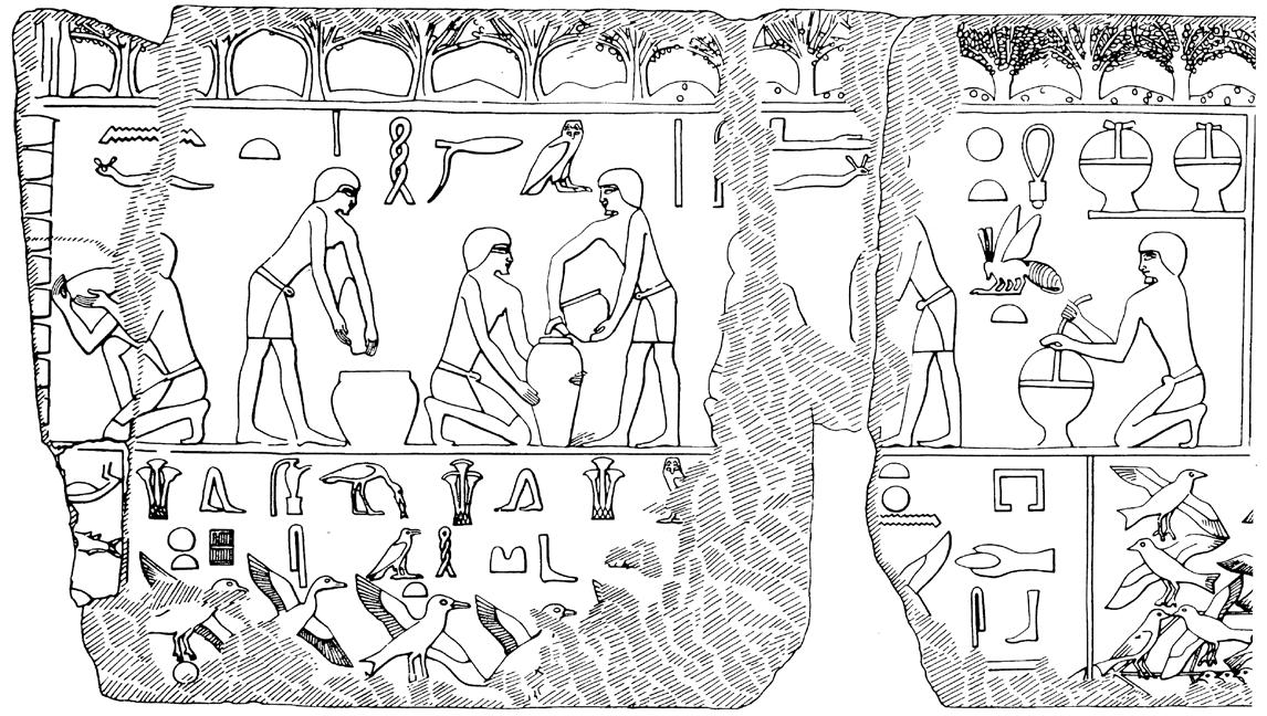 Ruche Egypte